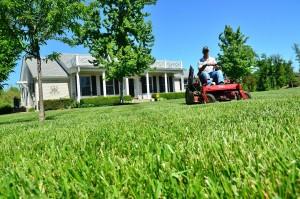 lawn-care-643556_1280